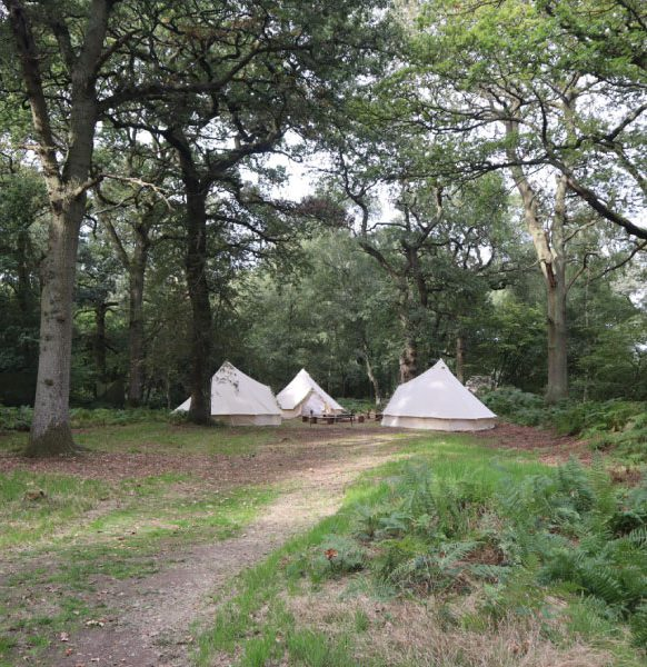 Enchanted-Bell-Tents-Corporate-events